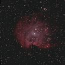 NGC2174 Monkey Head Nebula,                                Jay P Swiglo