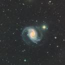 NGC 1566 - Galaxie dans la constellation de la Dorade,                                Roger Bertuli