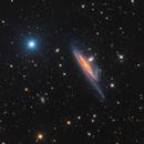 NGC 1531/1532 Interacting Galaxies in Eridanus,                                José Joaquín Pérez