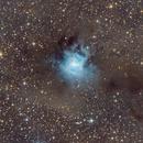 NGC 7023,                                Mirko Wanke