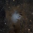 NGC 7023/LBN 487 Iris Nebula,                                Frank Zoltowski