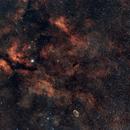 Cygnus Nebula IC1318 with Samyang 135mm,                                MayJ