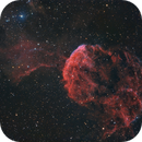 IC 443 - Jellyfish Nebula,                                Jens Zippel