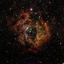 Rosette Nebula,                                Sean Gallagher