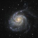 """M 101 - The Pinwheel Galaxy,                                Sebastian """"BastiH..."""