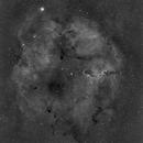IC 1396 Mosaic of 6 fields,                                Stanislav Holub