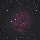 Cocoon Nebula,                                Wesley Joseph