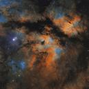 IC 1318 in Cygnus - two panel mosaic in Hubble Palette,                                Steve Milne