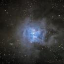 NGC7023 Irisnebel,                                Sascha Schueller