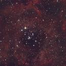 NGC2244 Rosette,                                Otzi