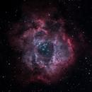 NGC2238 - The Rossette Nebula,                                Stuart Markus