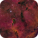 The Elephant Trunk in IC 1396,                                Paul Borchardt