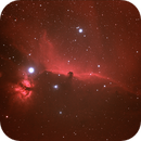 The Horsehead and Flame Nebula,                                Kevin Smith
