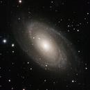 M81,                                David Johnson