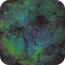 Elephant's Trunk Nebula, IC 1396,                                DustSpeakers
