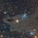LDN 1235 Dark Shark Nebula,                                Crash-dk