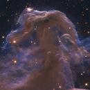 Horsehead Nebula - Hubble Legacy Archives... :-),                                Daniel Nobre