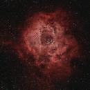 Rosette Nebula,                                Joel Donovan