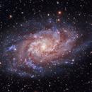 M33 Triangulum,                                Chris Bulik