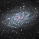 M33 Galassia del Triangolo finale,                                Alessandro Speranza