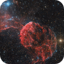 Jellyfish - IC443,                                Robert Eder