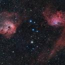 IC 405 & IC 410: Flaming Tadpoles,                                Marco Failli
