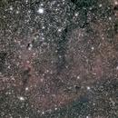 Elephant's Trunk Nebula,                                Fabio Pignata