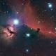Horsehead and Flame Nebula HaLRGB,                                Trevor Gunderson