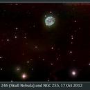 NGC 246, Skull Nebula, 17 Oct 2012,                                David Dearden