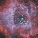 Rosette Nebula,                                physics5mickey
