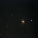 M094,                                geco71
