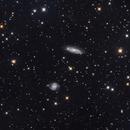 NGC3511 & NGC3513,                                David Cheng