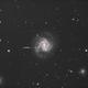 Supernova in M61,                                Alberto Tomatis