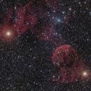 Jellyfish Nebula QHY168C firstlight,                                Eric Cauble