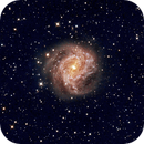 M 83 / NGC 5236 - SOUTHERN PINWHEEL GALAXY,                                Irineu Felippe de Abreu Filho