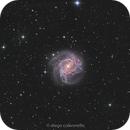 M83 test of Ha - RGB from my new piece of SKY,                                Diego Colonnello