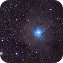 NGC 7023,                                Clayton Bownds