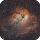 The Tadpole Nebula IC410,                                Peter Webster