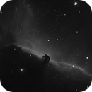 Barnard 33 (The Horsehead Nebula),                                 degrbi