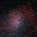 Flaming Star Nebulae,                                Gardner D. Gerry