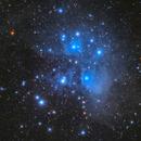 M45 Pleiades,                                Iwao Mori