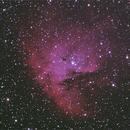 NGC 281 The Pac Man Nebula,                                David Trimble
