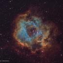 NGC2237 - Rosette Nebula,                                Cristiano Secci