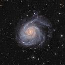 Pinwheel Galaxy and friends - M101 - HaLRGB,                                Arnaud Peel