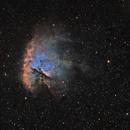 NGC 281 en SHO,                                kaeouach aziz