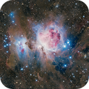 The Great Orion Nebula,                                Michael Lev