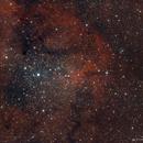 IC 1396 Elephant Trunk Nebula,                                star-watcher.ch