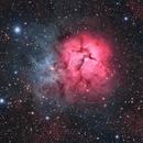 Trifid Nebula (HaRGB),                                John Renaud