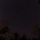 Constellations through the trees,                                slookabill