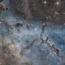 Rosette nebula,                                Fatalik